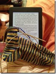 2013.1.sock